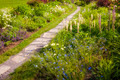 Wildflower garden and path - PhotoDune Item for Sale