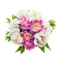 Peony flower bouquet isolated - PhotoDune Item for Sale