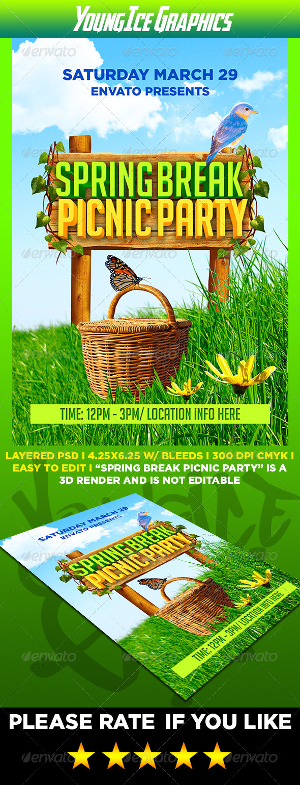 GraphicRiver Spring Break Picnic Party Flyer 7180253