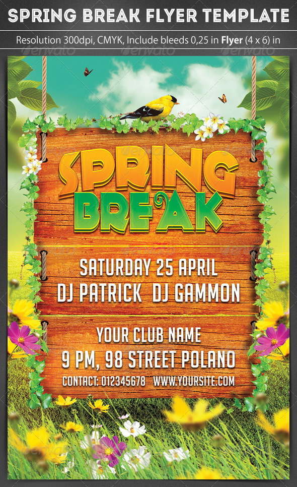 GraphicRiver Spring Break Party Flyer 7188386