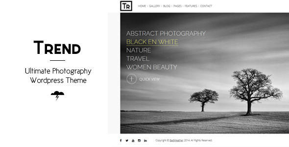 ThemeForest Trend Photography WordPress Theme 7116292