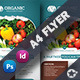 Organic Flyer Templates - GraphicRiver Item for Sale