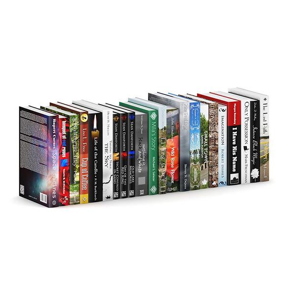 3DOcean Novel Books 2 7203769