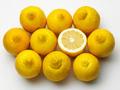 lemons - PhotoDune Item for Sale