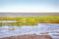 Peat banks of river Kolyma - PhotoDune Item for Sale