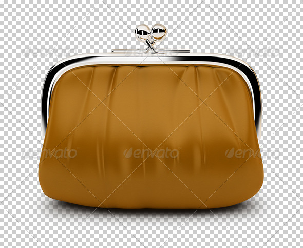 GraphicRiver Purse 7217283