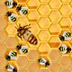 HoneySweeper (Live Minesweeper) Android Game - CodeCanyon Item for Sale