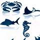 Marine Life Icon Set - GraphicRiver Item for Sale