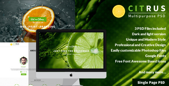 Citrus - One Page PSD Template - Corporate PSD Templates