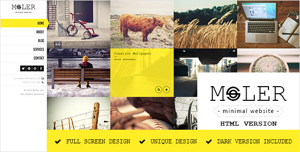 Moler - Full Screen Portfolio Template - Portfolio Creative