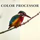 Color Processor Action - GraphicRiver Item for Sale