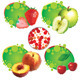 Summer Fruit - GraphicRiver Item for Sale