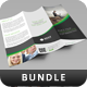 Creative Corporate Brochure Bundle Vol 6 - GraphicRiver Item for Sale