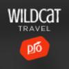 6-icon-wildcat.__thumbnail