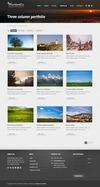 4-momento-portfolio-v2.__thumbnail