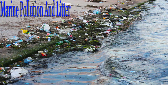 Marine Pollution And Litter