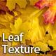 Autumn leaf - GraphicRiver Item for Sale