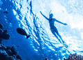 Active woman diving - PhotoDune Item for Sale