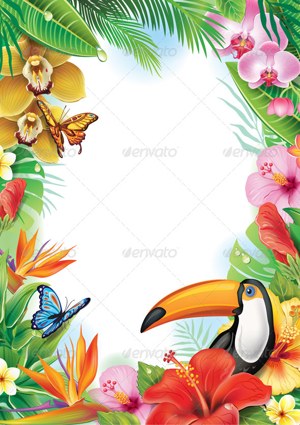 Frame with Tropical Flowers and Toucan