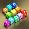 did you know words on colorful toy blocks - PhotoDune Item for Sale
