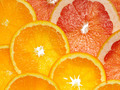 orange and grapefruit - PhotoDune Item for Sale