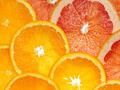 orange and grapefruit - PhotoDune Item for Sale