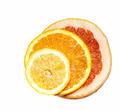 citrus fruits - PhotoDune Item for Sale