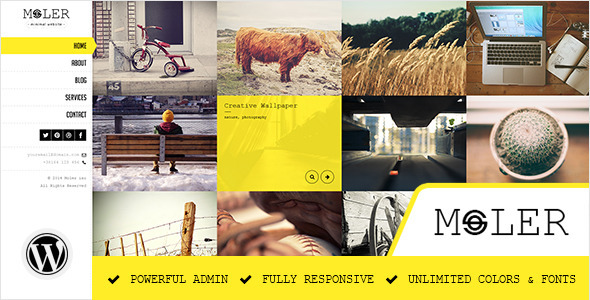 Moler - Full Screen WordPress Portfolio - Portfolio Creative
