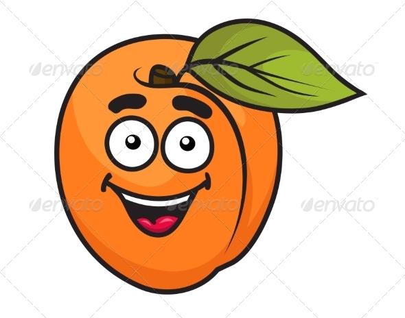 Colorful Orange Apricot Fruit