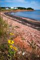 Prince Edward Island coastline - PhotoDune Item for Sale