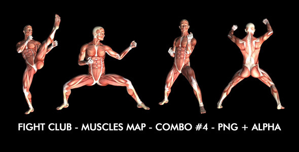 Fight Club Muscles Map Combo #4