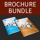 Multi-purpose Business Brochure Bundle Vol-1 - GraphicRiver Item for Sale