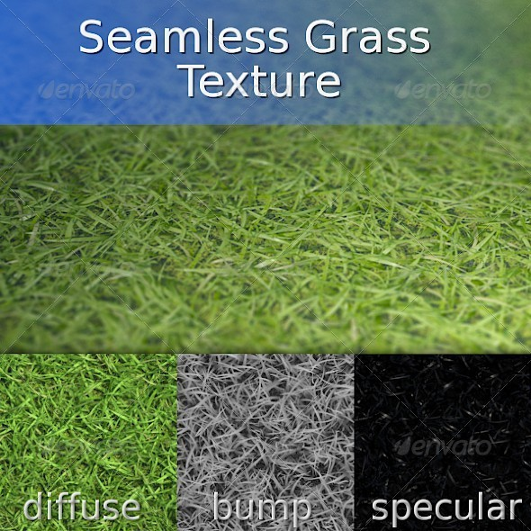 Grass Seamless Texture - 3DOcean Item for Sale