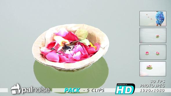India Varanasi Flowers Floating 5-Pack
