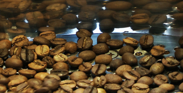 Coffee Roasting Machine 6