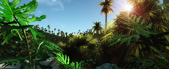 Tropic jungle wallpaper