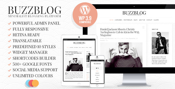 ThemeForest BuzzBlog Clean & Personal WordPress Blog Theme 7424768