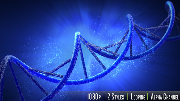 Double Helix Strand of DNA