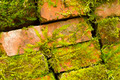 Old brick wall covered with moss and lichen - PhotoDune Item for Sale
