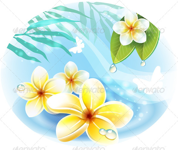 GraphicRiver Frangipani Plumeria Flowers on the Water 7448034