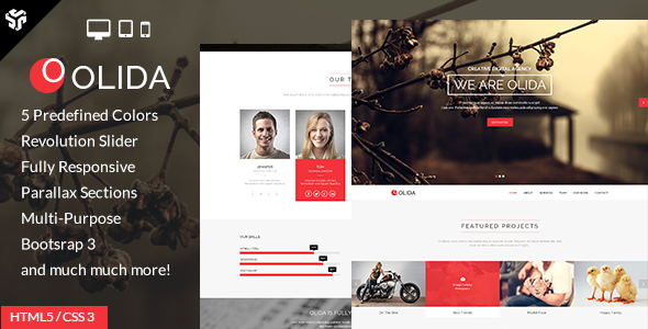 ThemeForest Olida Responsive One Page Multi-Purpose Parallax 7440193