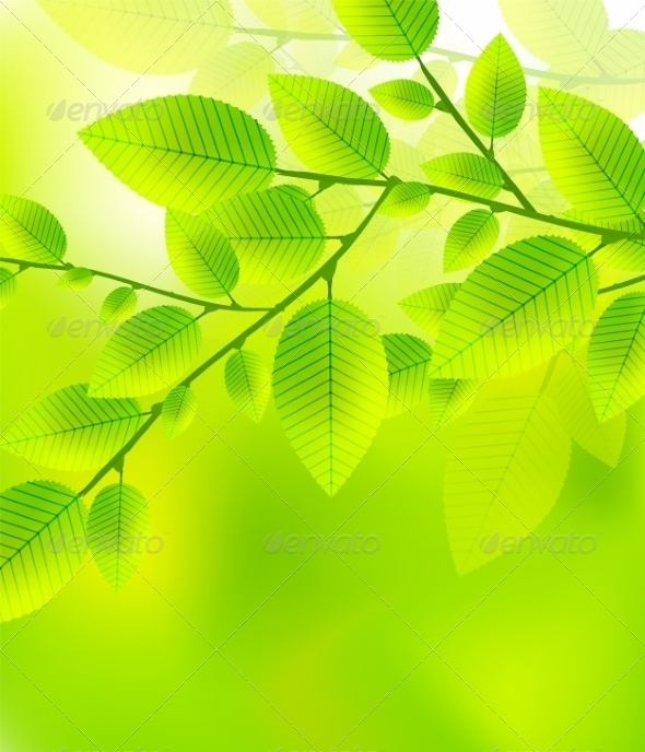 GraphicRiver Leaves Tree Blurred Green Vector Illustration 7458917