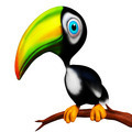 Toucan Baby Cartoon Smiling 3D isolated on white - PhotoDune Item for Sale