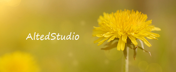 AltedStudio