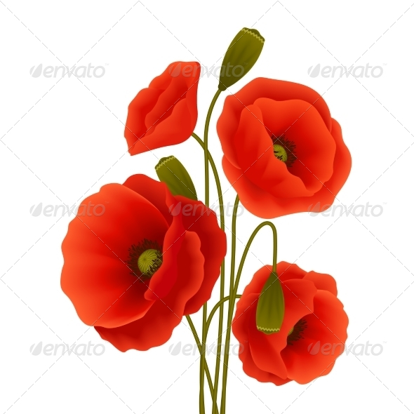 GraphicRiver Poppy Flower Poster 7480276