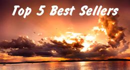 Top 5 Best Sellers