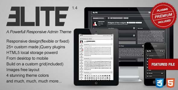 ELITE - A Powerfull Responsive Admin Theme
