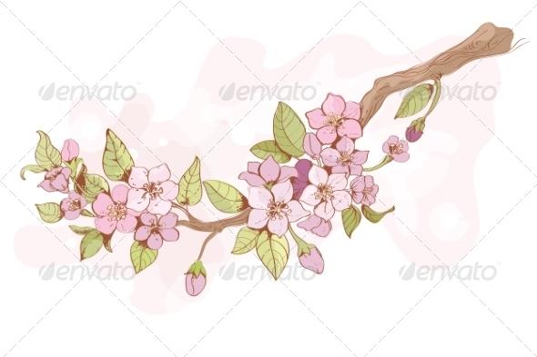 GraphicRiver Sakura Cherry Branch 7497013