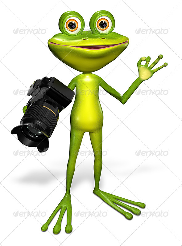 GraphicRiver Frog with a Camera 7497146