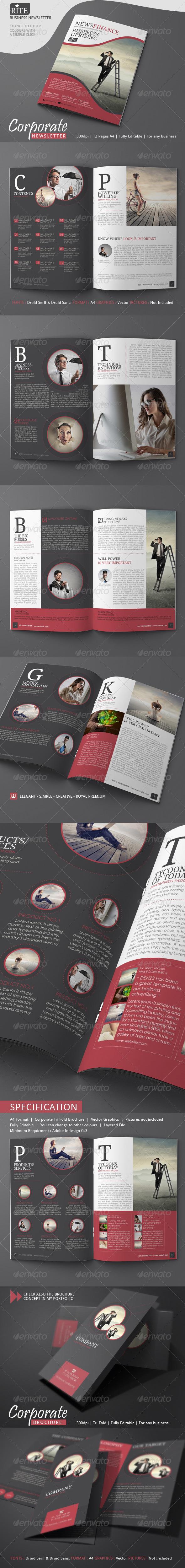 GraphicRiver RITE Newsletter Ideas 7497977